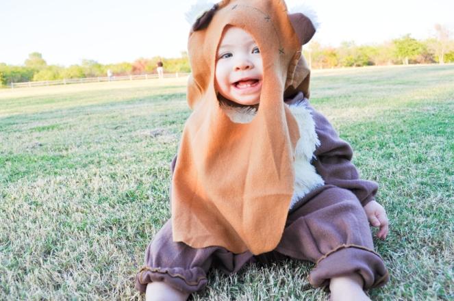 Pastel Carousel - Halloween - Ewok Costume